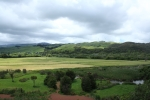 View of Wetlands, Te Apiti Wind Farm & Whariti Peak