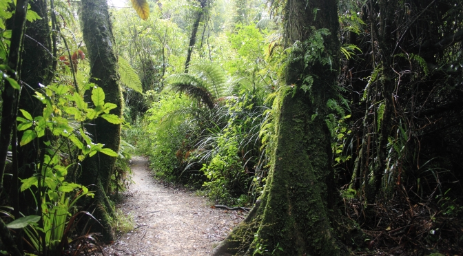 Day Trips for the Uninspired: Ashhurst Domain, Ashhurst, Only a 15 minute drive from Palmerston North in the Manawatu Region