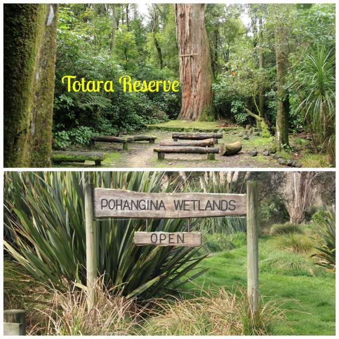 Day Trips for the Uninspired: Totara Reserve &  Pohangina Wetlands, Pohangina, Manawatu Region