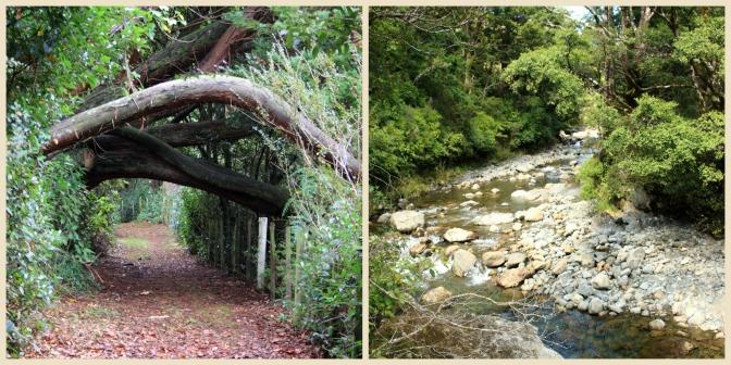 Day Trips for the Uninspired: Eketahuna Cliff Walk &  Tararua Forest Park Eketahuna, Tararua District, Manawatu Region