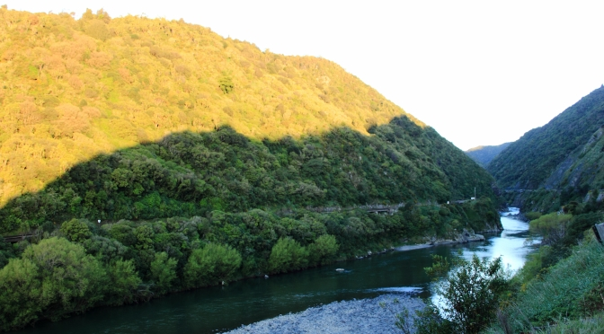 Day Trips for the Uninspired: Manawatu Gorge and Tawa Loop Track Walks. Manawatu Region