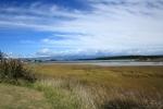 Manawatu Estuary