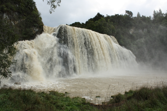 Day Trips for the Uninspired: Waihi Falls, Tararua District, Manawatu Region