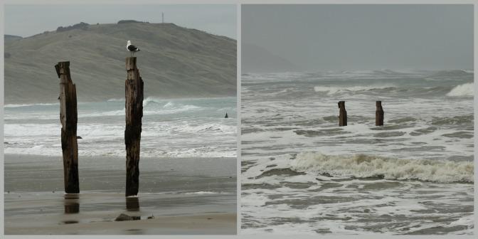 Day Trips for the Uninspired: Akitio Beach, Akitio, Tararua District, Manawatu Region
